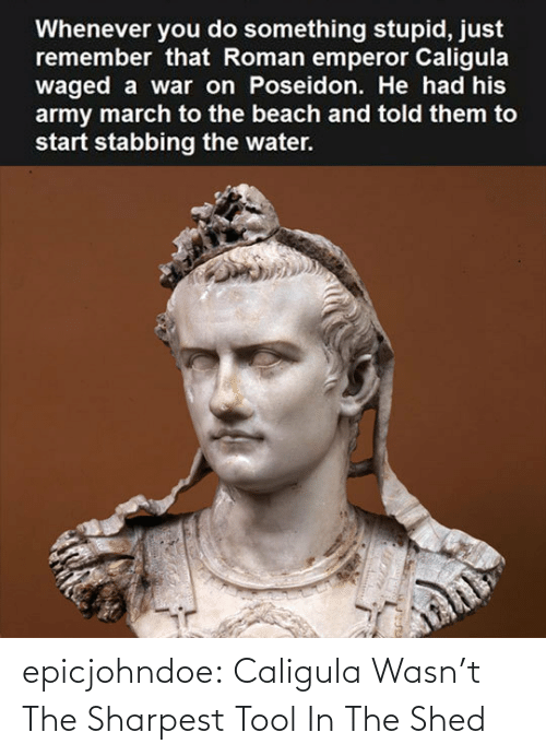 Tool: epicjohndoe:  Caligula Wasn't The Sharpest Tool In The Shed