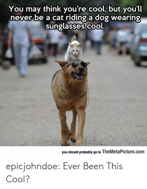 ever: epicjohndoe:  Ever Been This Cool?