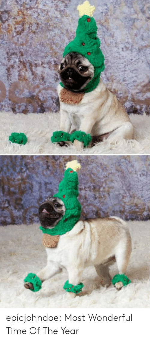 Tumblr, Blog, and Time: epicjohndoe:  Most Wonderful Time Of The Year