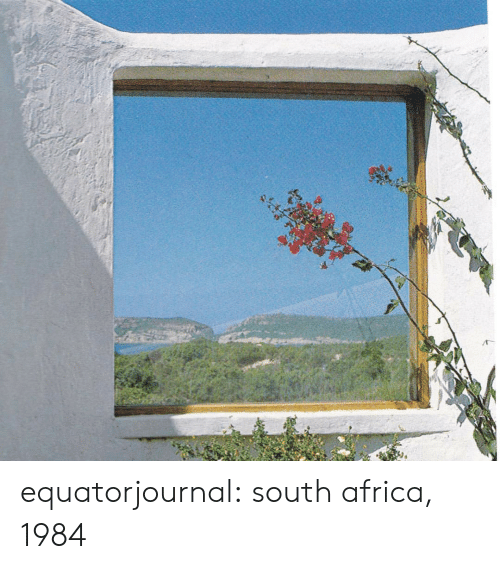 South Africa: equatorjournal: south africa, 1984