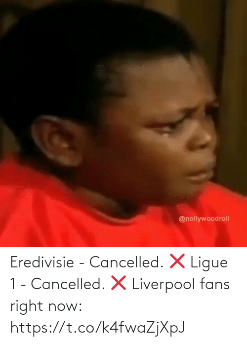 soccer: Eredivisie - Cancelled. ❌ Ligue 1 - Cancelled. ❌  Liverpool fans right now: https://t.co/k4fwaZjXpJ