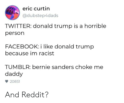 Bernie Sanders, Donald Trump, and Facebook: eric curtin  @dubstep4dads  TWITTER: donald trump is a horrible  person  FACEBOOK: i like donald trump  because im racist  TUMBLR: bernie sanders choke me  daddy  20851 And Reddit?