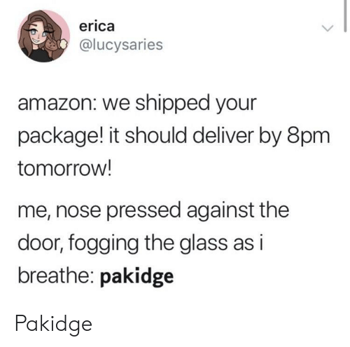 Shipped: erica  @lucysaries  amazon: we shipped your  package! it should deliver by 8pm  tomorrow!  me, nose pressed against the  door, fogging the glass as i  breathe: pakidge Pakidge
