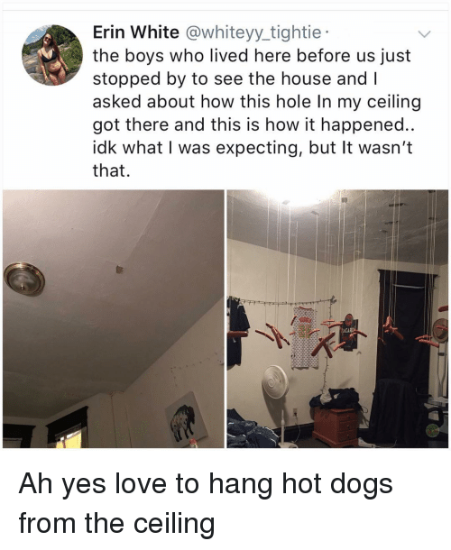 hot dogs: Erin White @whiteyy_tightie  the boys who lived here before us just  stopped by to see the house and I  asked about how this hole In my ceiling  got there and this is how it happened..  idk what I was expecting, but It wasn't  that.  ACAR Ah yes love to hang hot dogs from the ceiling