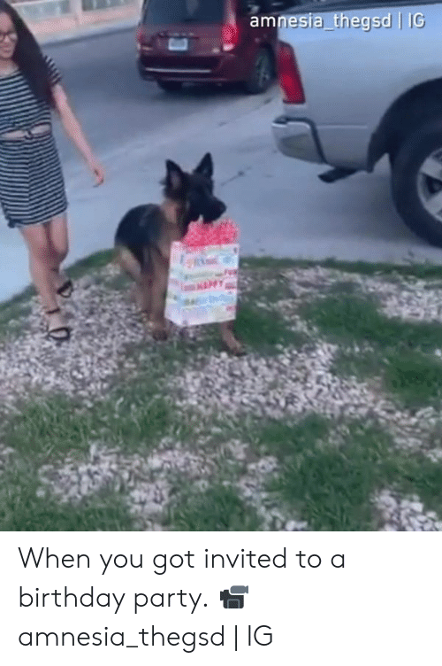 Birthday, Dank, and Party: esia thegsd | IG When you got invited to a birthday party.  📹amnesia_thegsd | IG