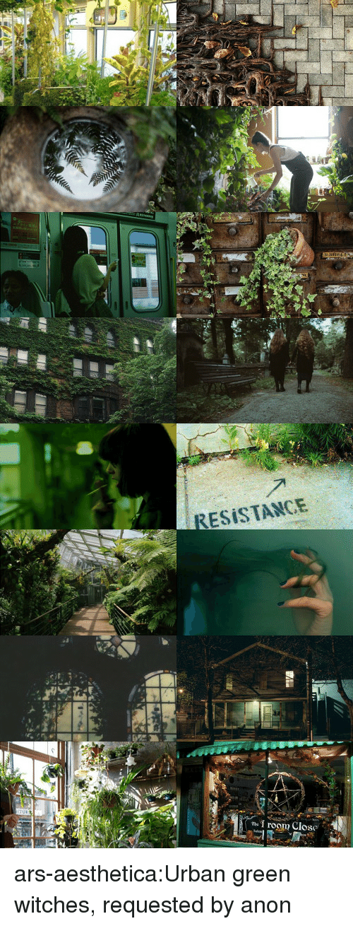 Tumblr, Blog, and Urban: ESİSTANCE  1 rogm Close ars-aesthetica:Urban green witches, requested by anon