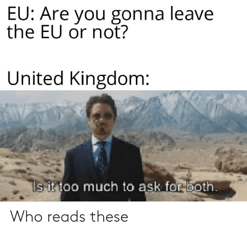 Too Much, United, and United Kingdom: EU: Are you gonna leave  the EU or not?  United Kingdom:  ls it too much to ask for both. Who reads these