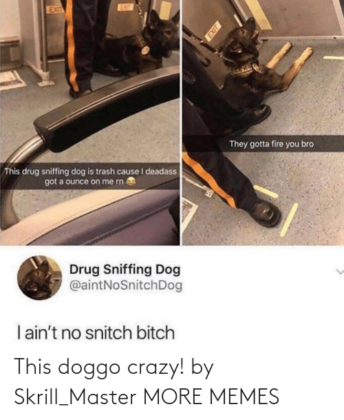 On Me: EUT  EXIT  They gotta fire you bro  This drug sniffing dog is trash cause I deadass  got a ounce on me rn  Drug Sniffing Dog  @aintNoSnitchDog  I ain't no snitch bitch This doggo crazy! by Skrill_Master MORE MEMES