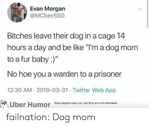 "Be Like, Hoe, and Sexy: Evan Morgan  @MChevSSG  Bitches leave their dog in a cage 14  hours a day and be like ""I'm a dog mom  to a fur baby:)""  No hoe you a warden to a prisoner  12:30 AM 2019-03-31 Twitter Web App  Sexy singies near you, but they are not interested  Uber  Humor failnation:  Dog mom"
