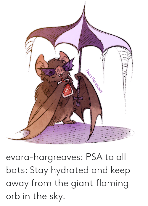 sky: evara-hargreaves:  PSA to all bats: Stay hydrated and keep away from the giant flaming orb in the sky.
