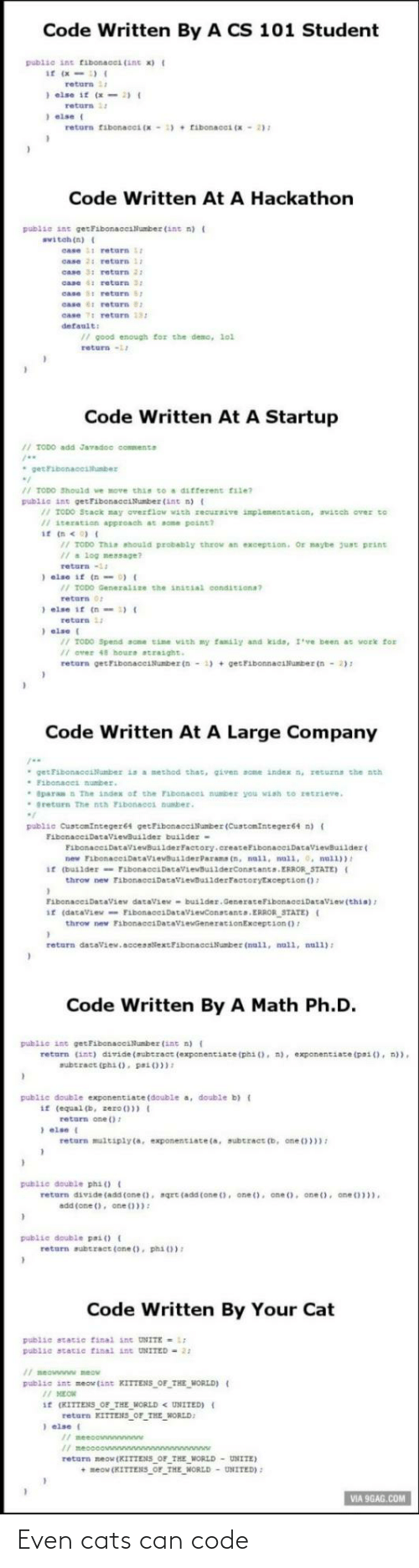 code: Even cats can code