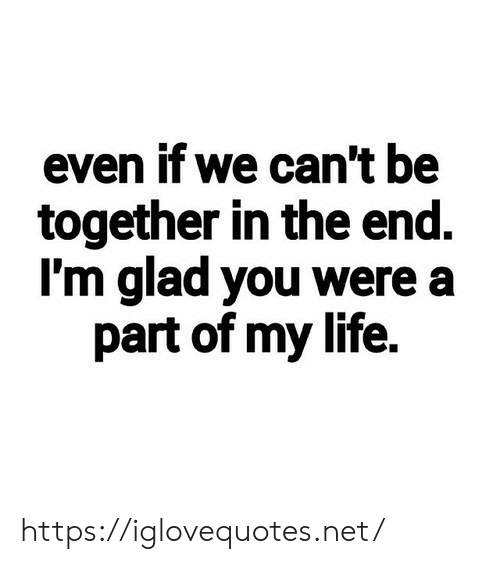 We Cant: even if we can't be  together in the end.  I'm glad you were a  part of my life. https://iglovequotes.net/