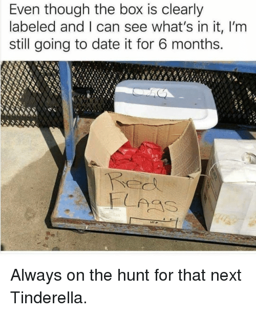 Memes, Date, and 🤖: Even though the box is clearly  labeled and I can see what's in it, I'm  still going to date it for 6 months. Always on the hunt for that next Tinderella.