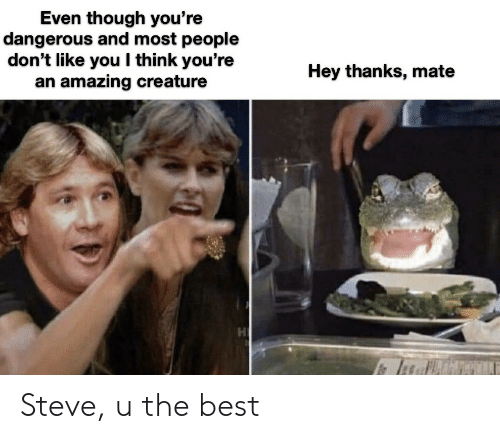 Best, Amazing, and Creature: Even though you're  dangerous and most people  don't like you I think you're  an amazing creature  Hey thanks, mate Steve, u the best