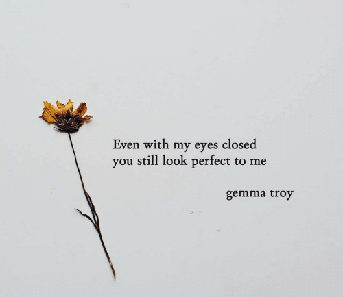 troy: Even with my eyes closed  you still look perfect to me  gemma troy