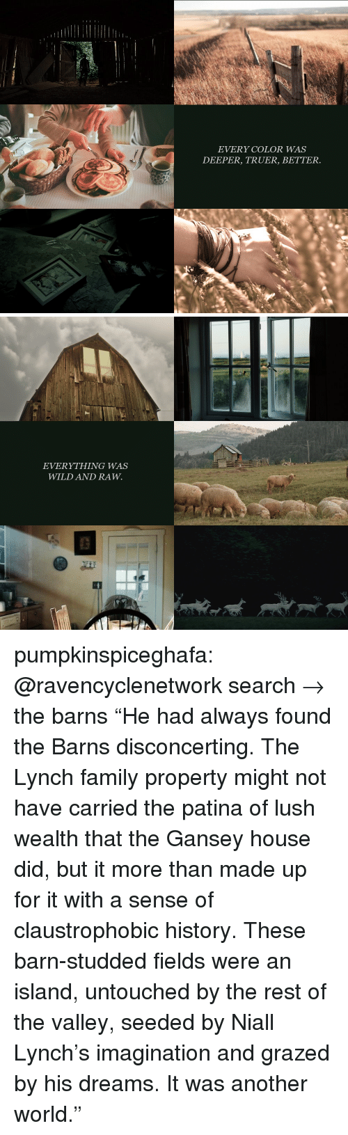 """Lush: EVERY COLOR WAS  DEEPER, TRUER, BETTER.   EVERYTHING WAS  WILD AND RAW. pumpkinspiceghafa: @ravencyclenetwork search→ the barns """"He had always found the Barns disconcerting. The Lynch family property might not have carried the patina of lush wealth that the Gansey house did, but it more than made up for it with a sense of claustrophobic history. These barn-studded fields were an island, untouched by the rest of the valley, seeded by Niall Lynch's imagination and grazed by his dreams. It was another world."""""""