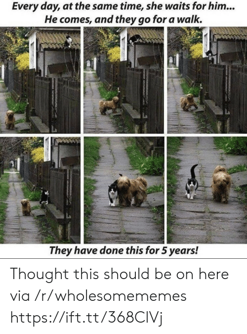 Time, Thought, and Him: Every day, at the same time, she waits for him...  He comes, and they go for a walk.  They have done this for 5 years! Thought this should be on here via /r/wholesomememes https://ift.tt/368ClVj