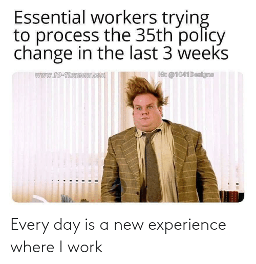 Experience: Every day is a new experience where I work