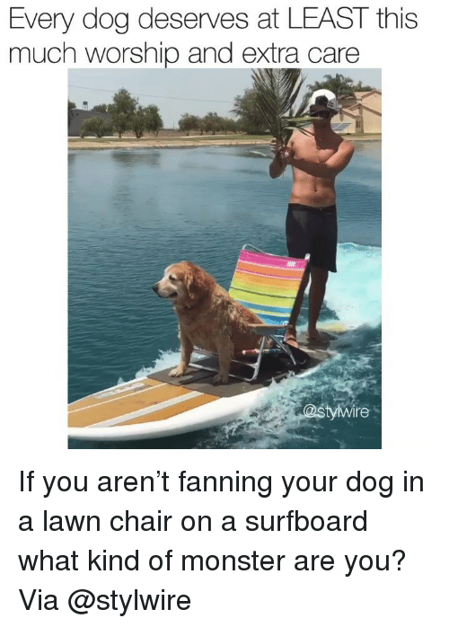 fanning: Every dog deserves at LEAST this  much worship and extra care  yWire If you aren't fanning your dog in a lawn chair on a surfboard what kind of monster are you? Via @stylwire