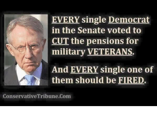 Memes, Military, and Single: EVERY single Democrat  in the Senate voted to  CUT the pensions for  military VETERANS  And EVERY single one of  them should be FIRED.  ConservativeTribune.Com