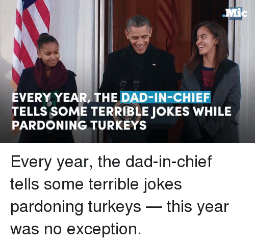 terrible joke: EVERY YEAR, THE DAD-IN-CHIEF  TELLS SOME TERRIBLE JOKES WHILE  PARDONING TURKEYS Every year, the dad-in-chief tells some terrible jokes pardoning turkeys — this year was no exception.