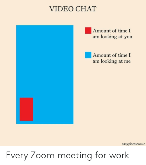 Zoom: Every Zoom meeting for work