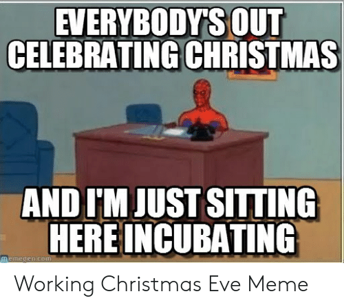 Christmas, Meme, and Eve: EVERYBODYS OUT  CELEBRATING CHRISTMAS  AND I'M JUST SITTING  HERE INCUBATING  memegen com Working Christmas Eve Meme