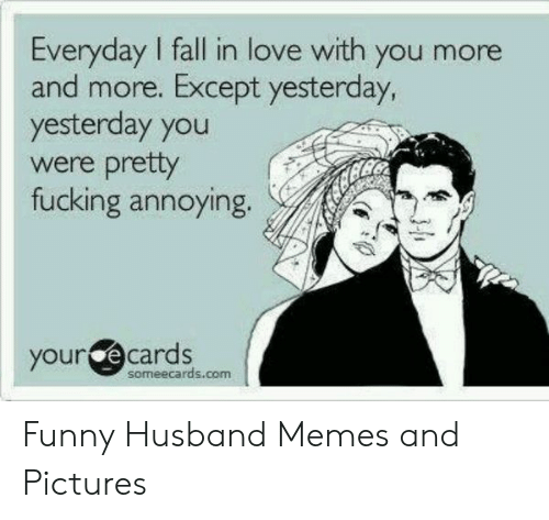 Funny Husband Memes: Everyday I fall in love with you more  and more. Except yesterday,  yesterday you  were prety  fucking annoying.  your e cards  someecards.com Funny Husband Memes and Pictures