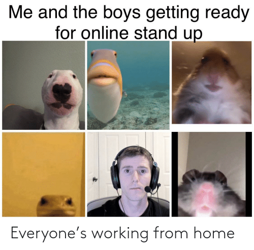 working: Everyone's working from home