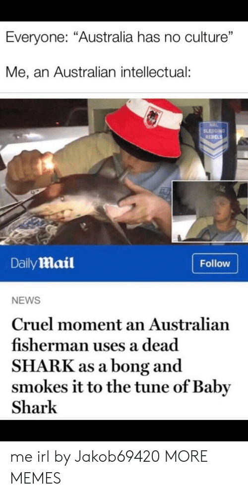 """Dank, Memes, and News: Everyone: """"Australia has no culture""""  Me, an Australian intellectual:  NRL  SLEDGING  REBELS  DailyMail  Follow  NEWS  Cruel moment an Australian  fisherman uses a dead  SHARK as a bong and  smokes it to the tune of Baby  Shark me irl by Jakob69420 MORE MEMES"""