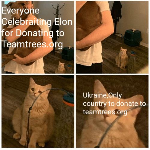 Donating: Everyone  Celebraiting Elon  for Donating to  Teamtrees.org  Ukraine, Only  country to donate to  teamtrees.org