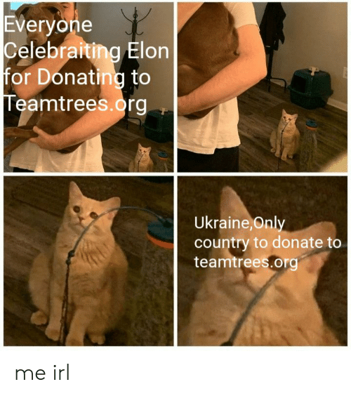 Donating: Everyone  Celebraiting Elon  for Donating to  Teamtrees.org  Ukraine,Only  country to donate to  teamtrees.org me irl