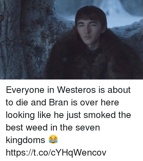Memes, Weed, and Best: Everyone in Westeros is about to die and Bran is over here looking like he just smoked the best weed in the seven kingdoms 😂 https://t.co/cYHqWencov