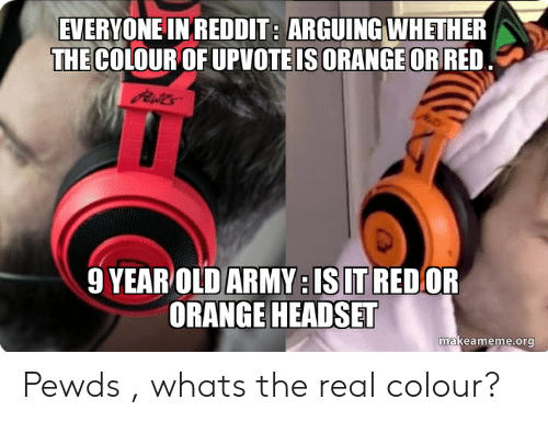 EVERYONE INREDDIT ARGUING WHETHER THECOLOUR OF UPVOTE
