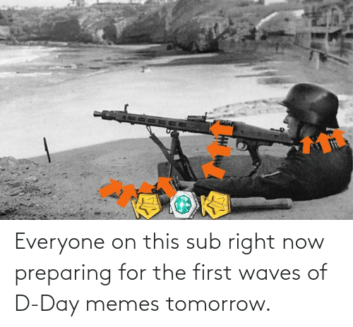 Waves: Everyone on this sub right now preparing for the first waves of D-Day memes tomorrow.