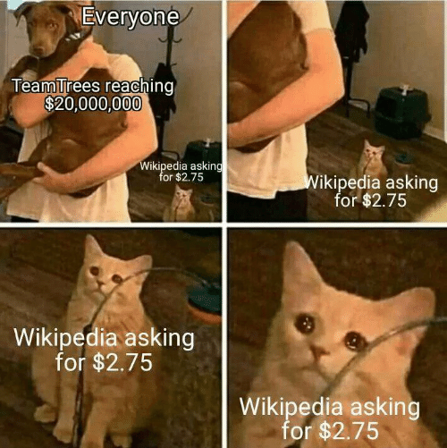 Asking For: Everyone  TeamTrees reaching  $20,000,000  Wikipedia asking  for $2.75  Wikipedia asking  for $2.75  Wikipedia asking  for $2.75  Wikipedia asking  for $2.75