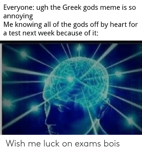 Meme, Reddit, and Heart: Everyone: ugh the Greek gods meme is so  annoying  Me knowing all of the gods off by heart for  a test next week because of it: Wish me luck on exams bois
