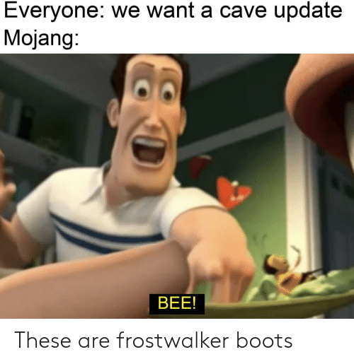 Boots, Bee, and Cave: Everyone: we want a cave update  Mojang:  BEE! These are frostwalker boots
