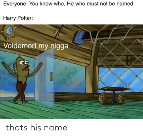 Harry Potter: Everyone: You know who, He who must not be named  Harry Potter:  Voldemort my nigga  CD thats his name