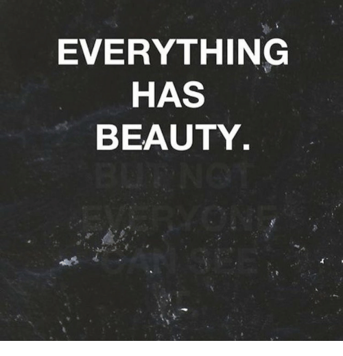 Beauty, Everything, and Has: EVERYTHING  HAS  BEAUTY