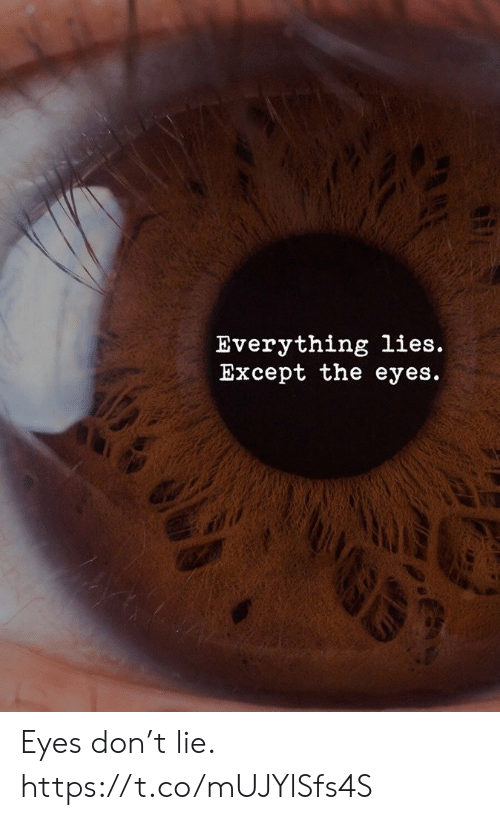 Memes, 🤖, and Don: Everything lies.  Except the eyes.  GE Eyes don't lie. https://t.co/mUJYlSfs4S