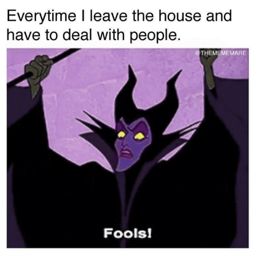 fools: Everytime I leave the house and  have to deal with people  @THEMEMEMARE  Fools!