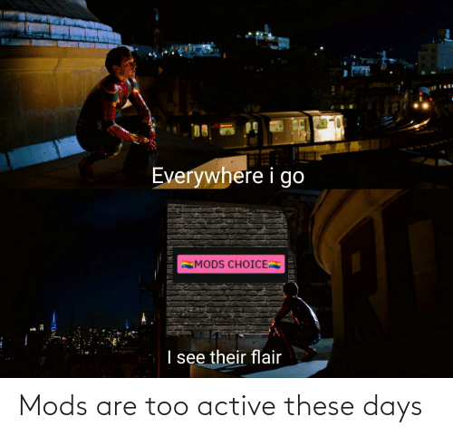 Dank Memes, Mods, and Flair: Everywhere i go  MODS CHOICE  I see their flair Mods are too active these days