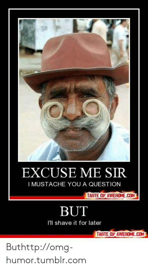 Me Sir: EXCUSE ME SIR  I MUSTACHE YOU A QUESTION  TASTE OF AWESOME.COM  BUT  I'll shave it for later  TASTE OF AWESOME.COM Buthttp://omg-humor.tumblr.com
