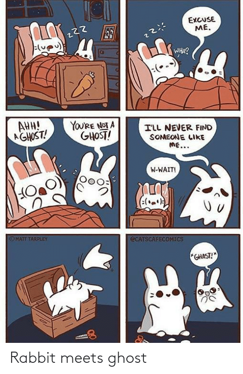 Ghost, Rabbit, and Never: EXCUSE  ME.  WHA?  AHH!  AGHOST!  YOU'RE NOT A  GHOST!  ILL NEVER FIND  SOMEONE LIKE  ME...  W-WAIT!  (:(.)  OMATT TARPLEY  ECATSCAFECOMICS  *GHAST! Rabbit meets ghost
