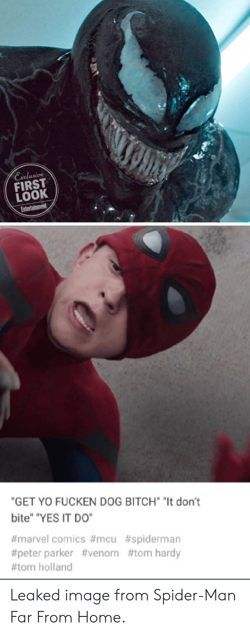 """Bitch, Marvel Comics, and Spider: Exelusive  FIRST  LOOK  """"GET YO FUCKEN DOG BITCH """"It don't  bite"""" """"YES IT DO""""  #marvel comics #mcu #spiderman  #peter parker #venom #tom hardy  #tom holland Leaked image from Spider-Man Far From Home."""