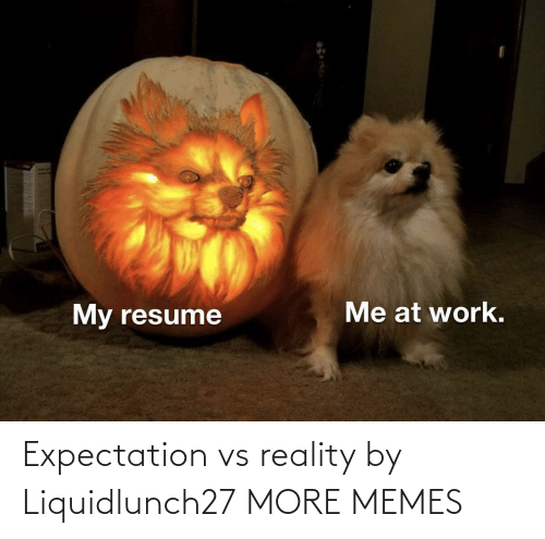 expectation: Expectation vs reality by Liquidlunch27 MORE MEMES