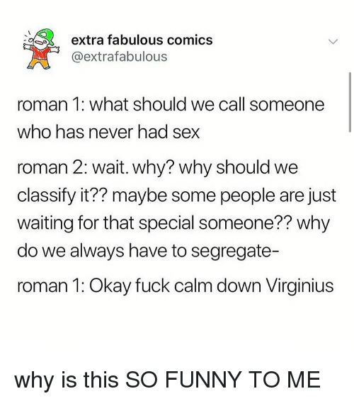 Funny, Memes, and Sex: extra fabulous comics  @extrafabulous  roman 1: what should we call someone  who has never had sex  roman 2: wait. why? why should we  classify it?? maybe some people are just  waiting for that special someone?? why  do we always have to segregate-  roman 1: Okay fuck calm down Virginius why is this SO FUNNY TO ME