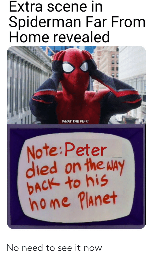 Reddit, Home, and Spiderman: Extra scene in  Spiderman Far From  Home revealed  WHAT THE FU-?!  Note:Peter  died on the way  DACK to his  home Planet No need to see it now