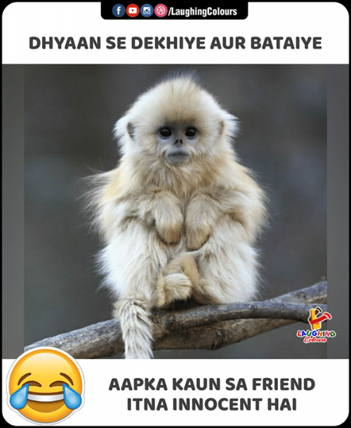 Indianpeoplefacebook, Friend, and Laughing: f ©®/LaughingColours  DHYAAN SE DEKHIYE AUR BATAIYE  LAUGHING  Hlers  AAPKA KAUN SA FRIEND  ITNA INNOCENT HAI
